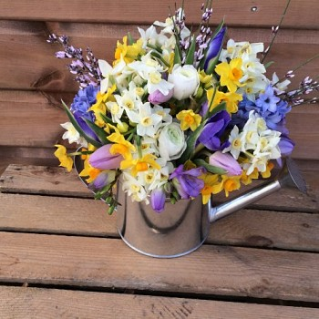 Watering Can With Spring Flowers Earth Seed To Bloom