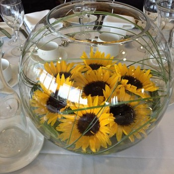 Large gold fish bowl earth seed to bloom chichester for Dollar tree fish bowls