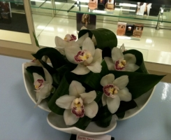 house-of-fraser-orchid-bowl