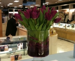 house-of-fraser-tulips