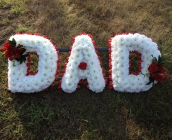 dad-with-red-spray
