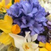 Watering Can with Spring Flowers -