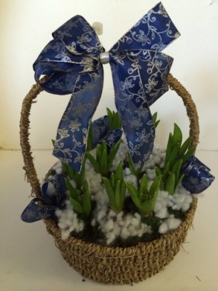 Basket of Hyacinths -