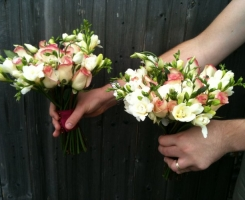 rose-freesia-posies