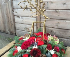 Christmas Arrangement F