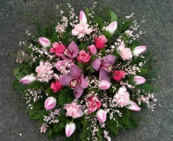 pink-orchid-posy