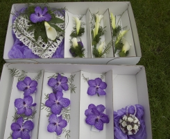 vanda-orchid-wedding