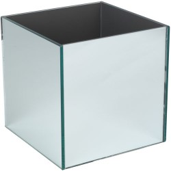 Mirrored Cube Vases